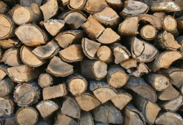 Tips on how to select the best firewood