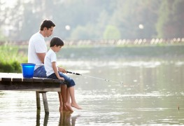 The most effective types of bait to use when fishing in fresh water