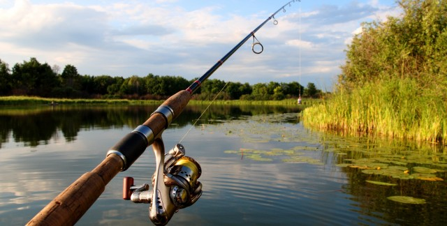 Guide to buying a fishing rod