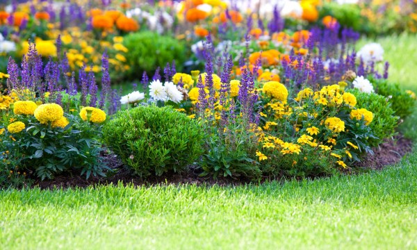 Make your own flower bed for a better yard