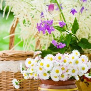 Tips for decorating with flowers