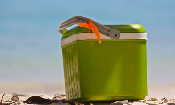 Cool tips for cleaning a food cooler