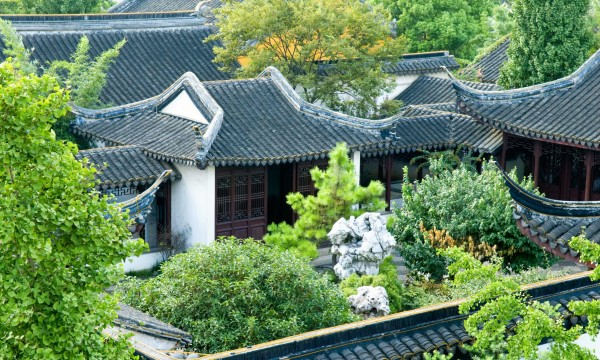 Garden roofing: the growing trend in eco-friendly roofing