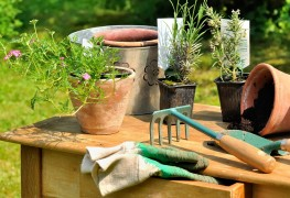 The best way to sharpen garden tools