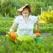 An easy guide to year-round gardening