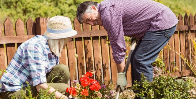 10 ways to garden in small spaces