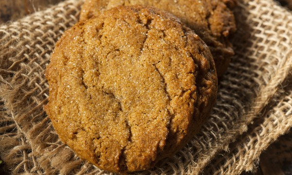 Sweet treat recipe: gingersnaps with dried cranberries