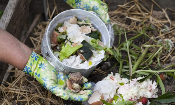 4 common household items you should not compost