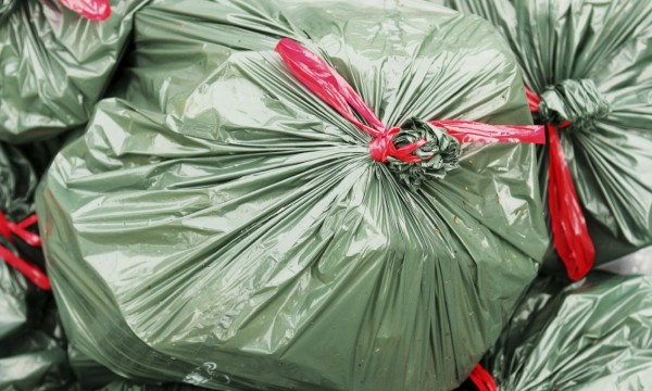 How to buy a trash compactor