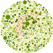 Do you need a colour vision test?