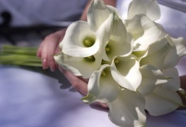 DIY instructions for making a lily bouquet