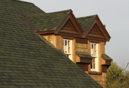 How to get rid of the mould in your roof