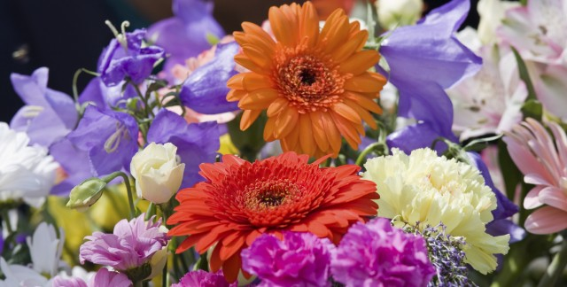 A primer in silk flower arrangements