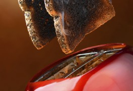 What to do if your toaster is toast