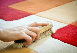 How to clean cat urine off carpet