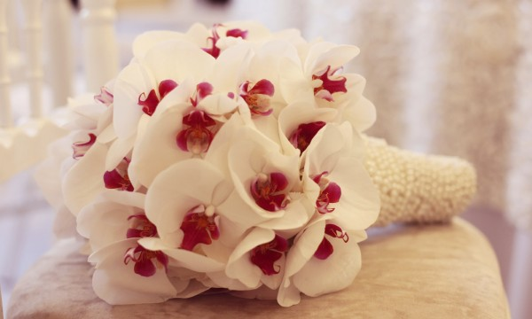 creating a beautiful orchid bouquet