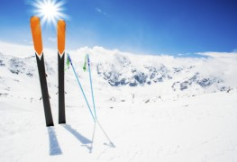 How to benefit from ski test information