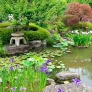 How To Design Your Own Japanese Garden