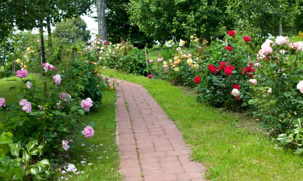 8 simple methods to save money on landscaping