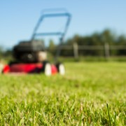 4 easy tips for a beautiful lawn