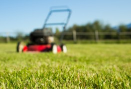 Having a beautiful and consistently green lawn takes care and patience. With these easy steps, you'll have a lawn to be proud of in no time.