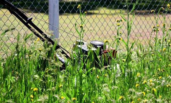 Are you correctly mowing your lawn?
