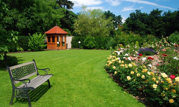 How to identify soil pH for a healthy lawn