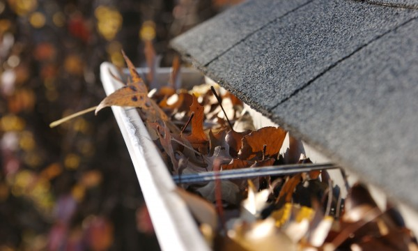 3 expert pointers for clearing out gutters