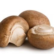 The healing, tasty varieties of mushrooms and truffles