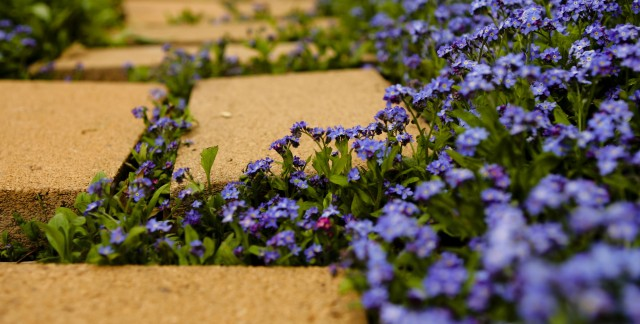 Building a paver path yourself