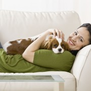 Tricks to keep your pet's environment clean
