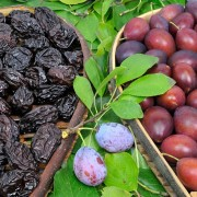 Top tips on health benefits of plums and prunes