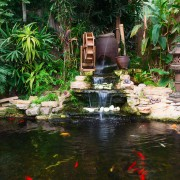 Add life to your backyard with a small pond and fountain