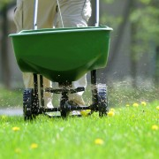 3 fertilizing tips to make a good lawn better