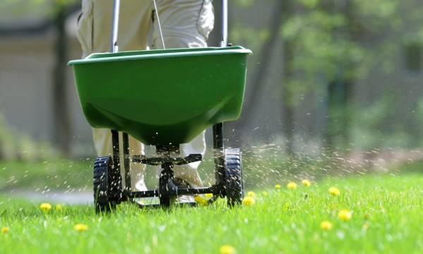 3 fertilizing tips to make a good lawn better
