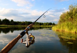 Tips on choosing the right fishing pole
