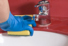 What's the best way to get rid of the germs in my sink?