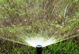 Replace a broken sprinkler head