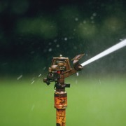 7 Tips for hose and sprinkler care