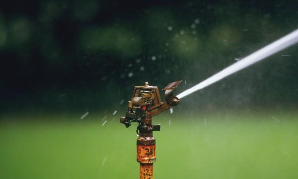 7 Tips for hose and sprinkler care