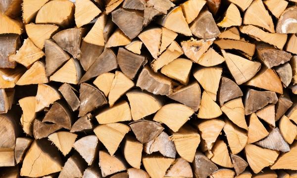 Smart advice on buying firewood