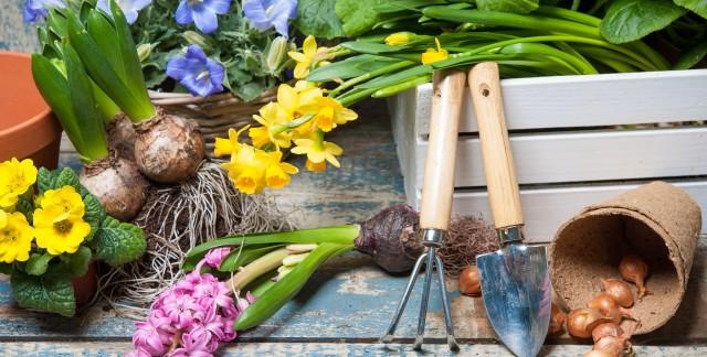 Time-saving gardening secrets