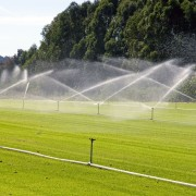 Are you watering your lawn correctly?