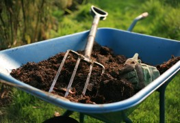 5 can't-miss tips for successful winter composting