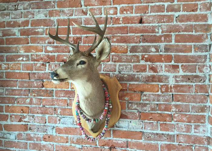 An enchanting stag's head greets customers as they enter Whiskey & Cake.
