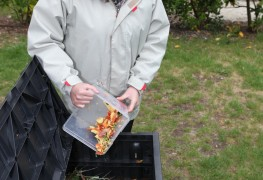 5 tips for winter composting