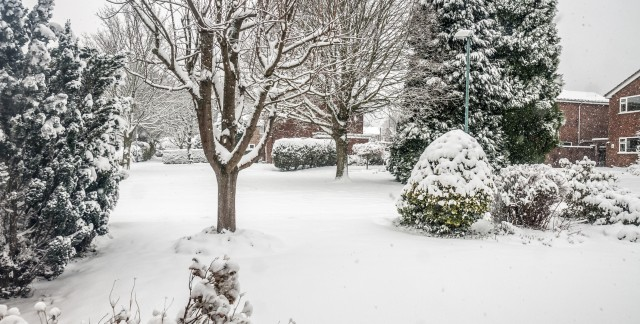 4 steps to prepare your garden for winter with compost