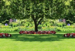 Covers to turn your yard into the sanctuary you deserve