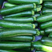 All about summer squash and winter squash