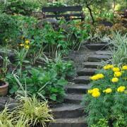 10 conseils pour intégrer des escaliers à votre extérieur